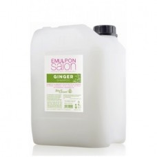 Шампунь для блеска с экстрактом имбиря Helen Seward EMULPON Salon Ginger Shampoo10л